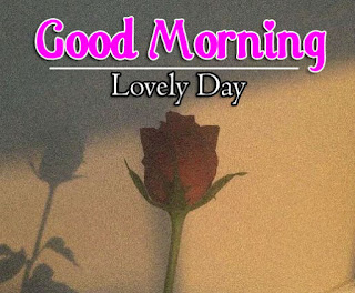 New Good Morning 4k Full HD Images Download For Daily%2B20