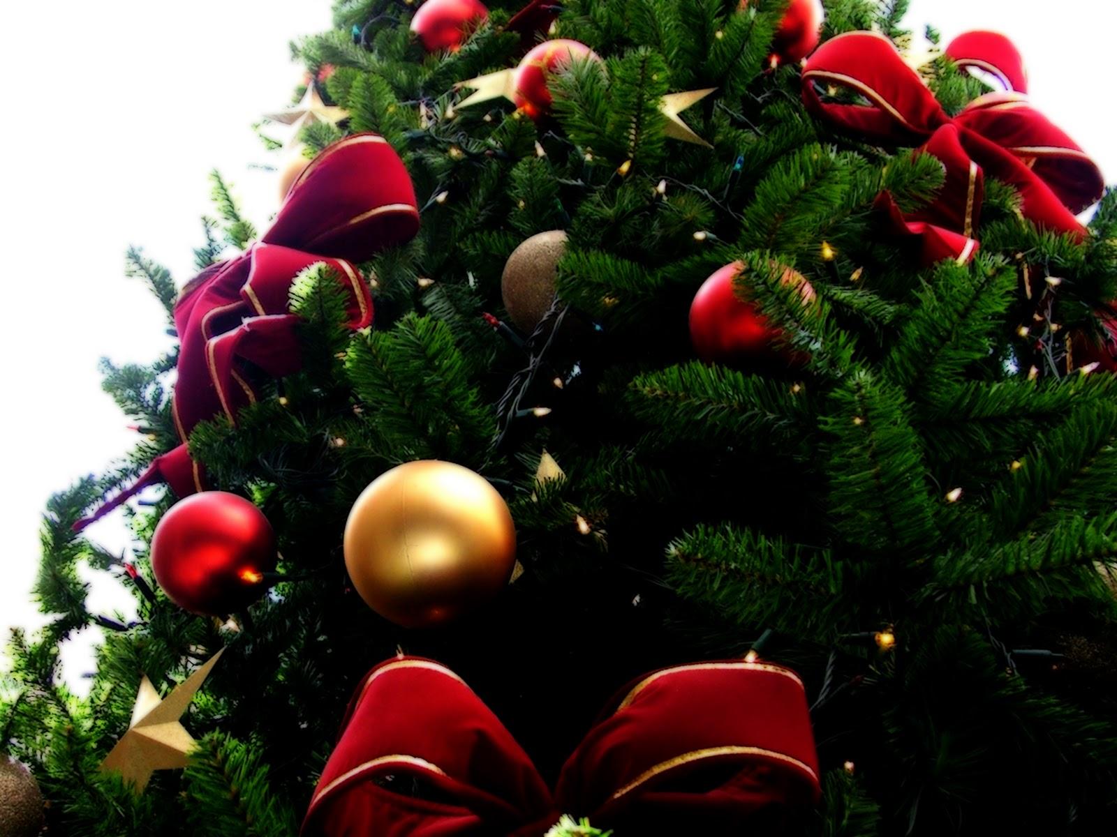 Imagenes de un arbolito de navidad - Imagenes arbol de navidad ...