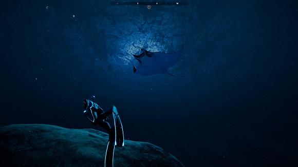 beyond-blue-pc-screenshot-4