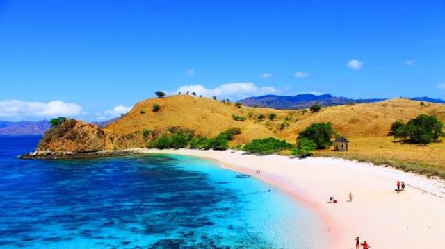pantai-merah-muda-pulau-komodo