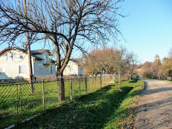 Нове Село Дрогобицького району. Вулиця Лесі Українки