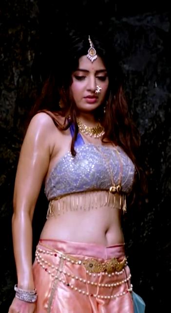 Actress Poonam Kaur Hot Navel Show Photos Navel Queens