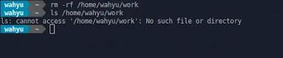 delete directory work