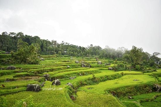 perjalanan menuju Batutumonga