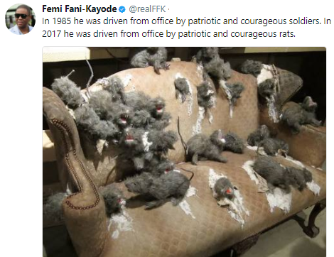 Image result for rats in Buhari office