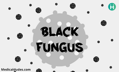 Basic about Black fungus in hindi