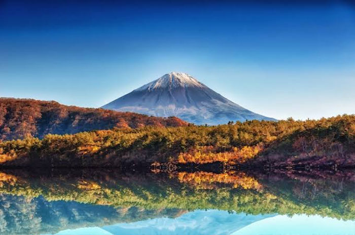 Aokigahara Terletak di Dekat Gunung Fuji