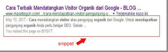 snippet search engine