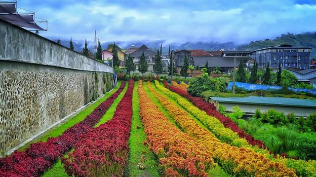 Taman Bunga Nusantara Yang Harus Dikunjungi