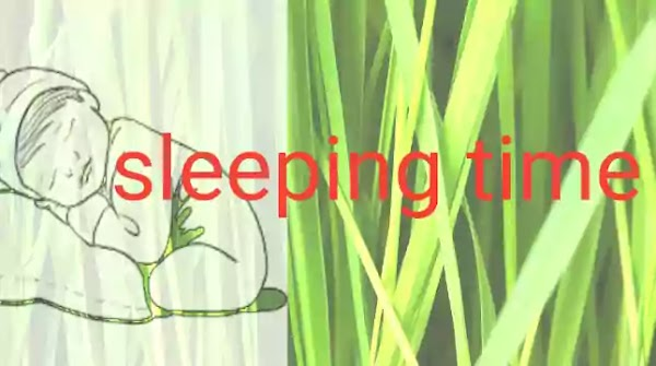 How to stop rapid sleeping habits in 21 days ?