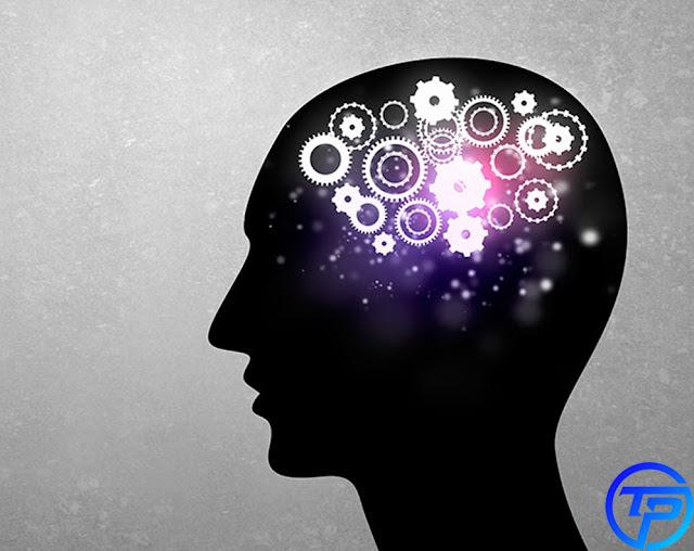 أفضل 3 ألعاب ذكاء مهمين لتنمية ذكائك وزيادة مهاراتك