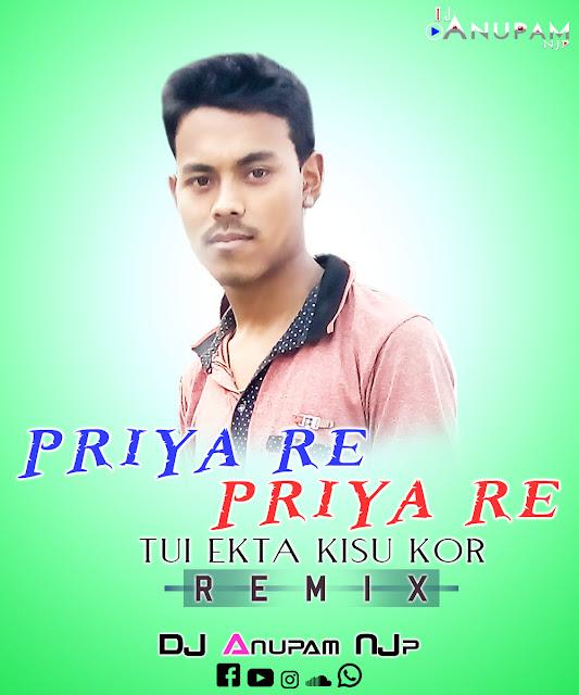 Priya Re Priya Re Tui Ekta Kisu Kor (Remix) DJ Anupam NJp