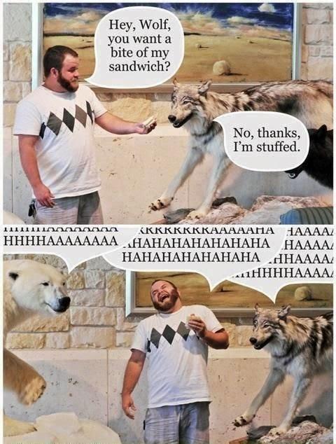 Funny Stuffed Animal Joke - Hey, Wolf, you want a bite of my sandwich