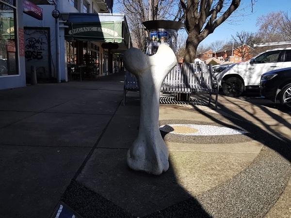 Canberra Public Art   Femur Bone in Griffith