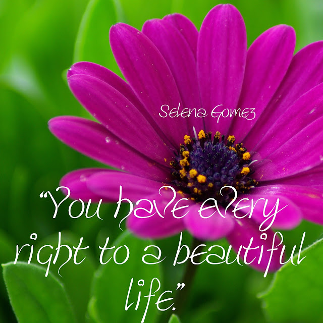 You have every right to a beautiful life. - Selena Gomez