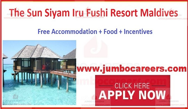 Resort jobs in Maldives,