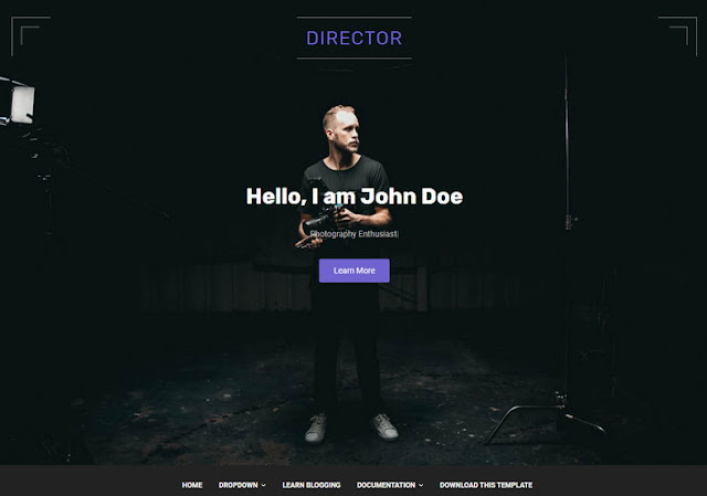 Director Blogger Template