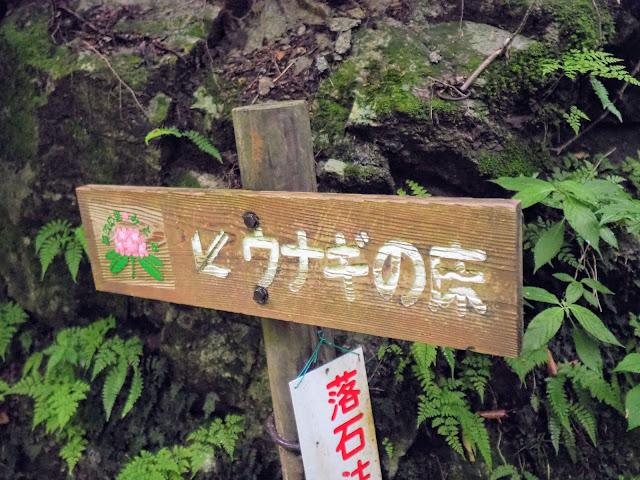 西沢渓谷 ウナギの床看板