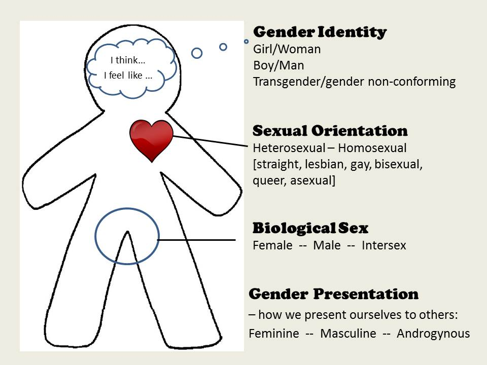 The Psychology Behind Sexual Identity and Preference