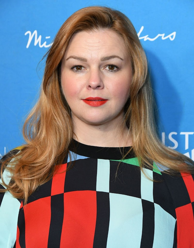 Amber Tamblyn Clicks at Emily's List Brunch and Panel Discussion in Los Angeles 4 Feb-2020