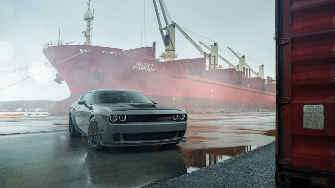 Dodge Challenger, Carro, Hd, iPhone 6,7,8