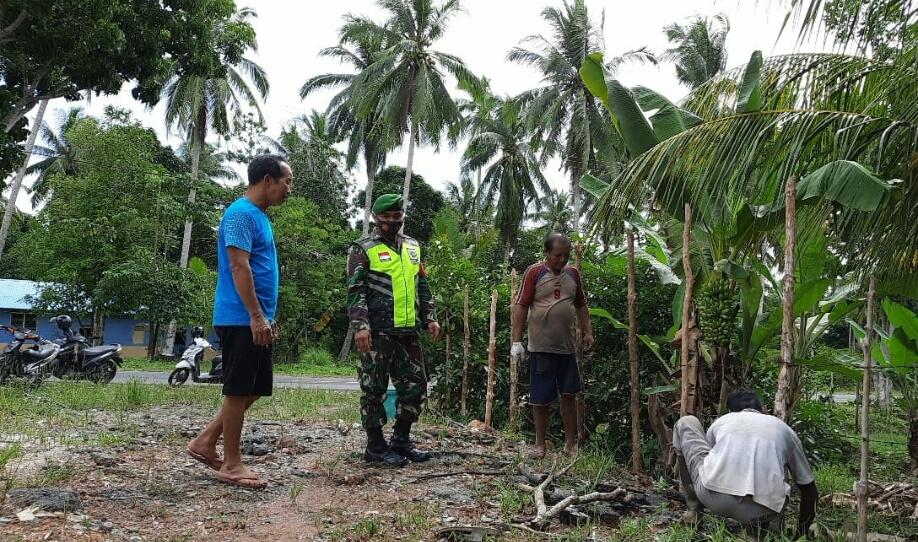 Lakukan Komsos Dengan Pemilik Kebun, Babinsa Desa Cemaga Utara Himbau  Selalu menerapkan Prokes