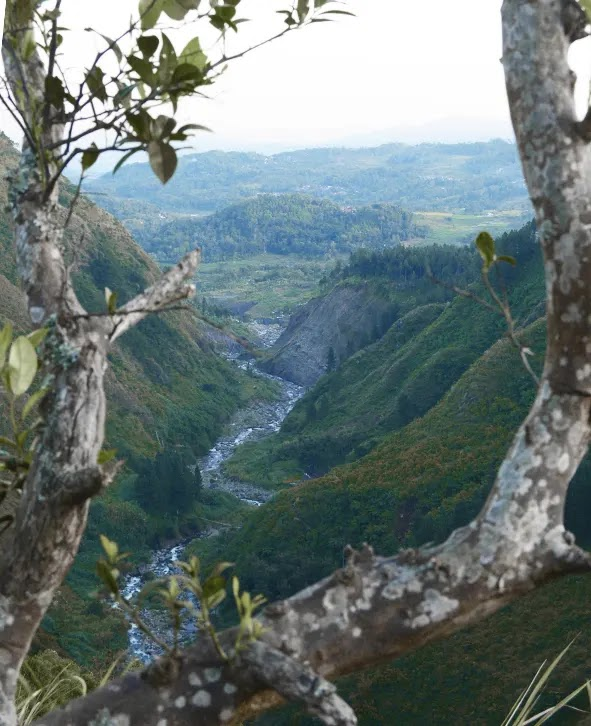 pesona bukit waru doyong brebes mirip the valley at stalhiem Norwegia - foto instagram jalalludinj