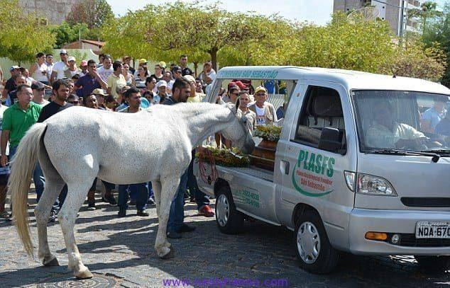 Лошадь пришла на похороны хозяина. Когда животное заплакало, люди обомлели от удивления!