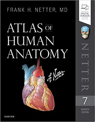 Atlas of Human Anatomy by by Frank Netter MD