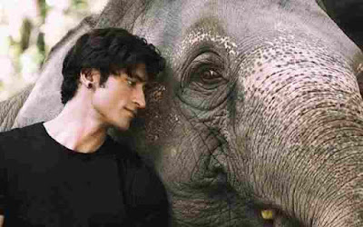 Junglee and Vidyut Jamwal are worth seeing in the 'Wild' teaser