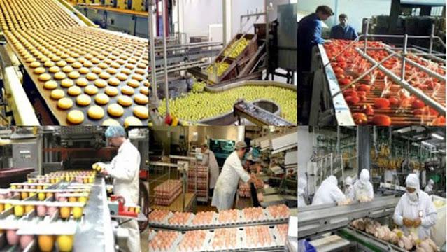 الصناعة الزراعية ، أحد الركائز المستقبلية للصناعة المغربية ما بعد COVID؟