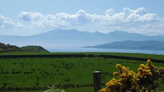 Skót táj rekettyéssel, hegyekkel és zöld fűvel
