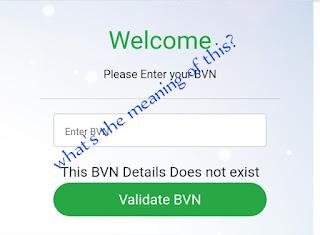 What is the meaning of BVN DOESN'T EXIST