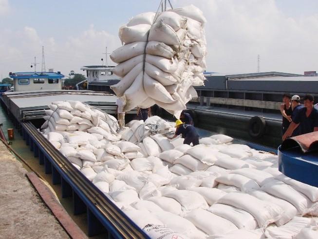 Xuất khẩu gạo của Việt Nam có tín hiệu tốt hơn sau khi Quốc hội thông qua Hiệp định EVFTA. Ảnh minh họa: Gia Tuệ