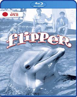 Flipper – Temporada 1 [3xBD25] *Subtitulada