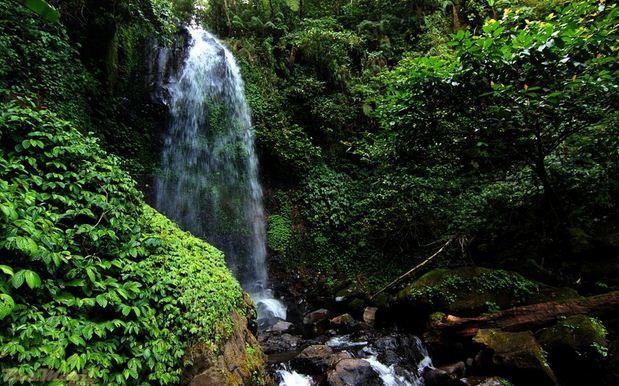 Upaya, Usaha dan Cara Pelaestarian Lingkungan Hidup