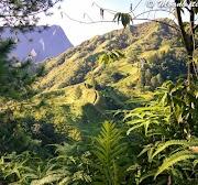 Crêtes Pic Vert Papeete
