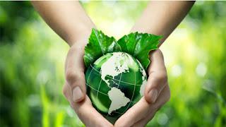 La provincia conmemora la Semana del Ambiente en modo virtual