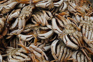 A pile of beige and orange-ish crabs
