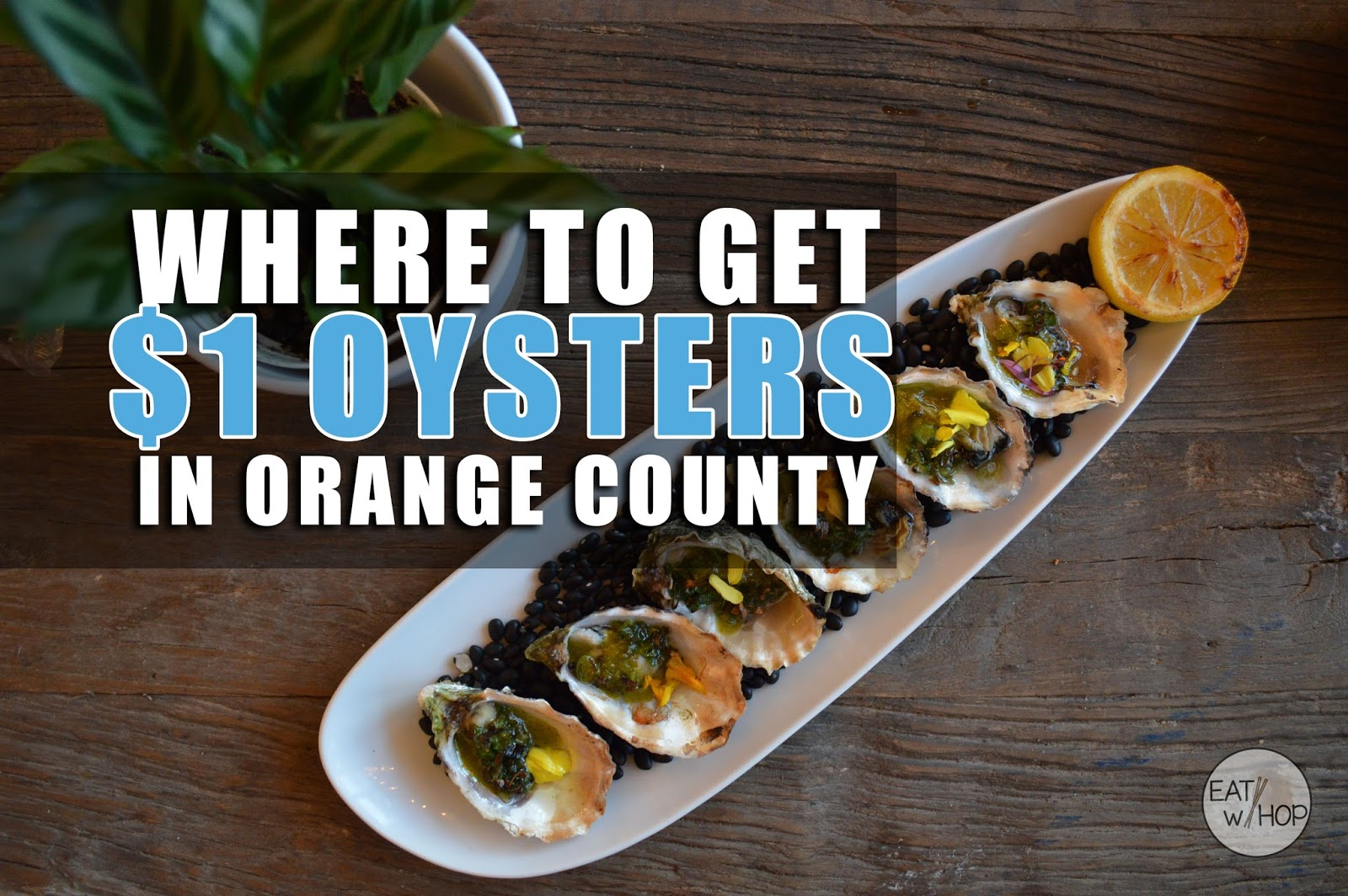 Your Ultimate Guide to $1 Oysters in Orange County