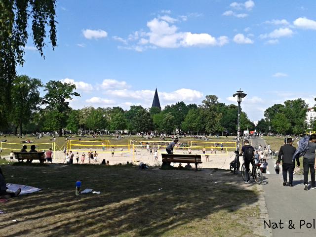 siatkówka w parku