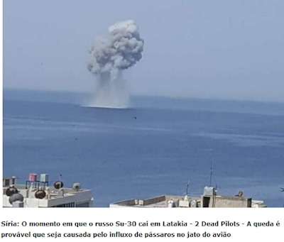 Colisão com passaro pode ter abatido Sukhoi 30 na Siria.