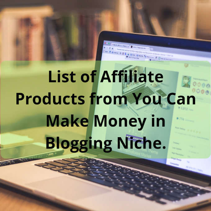 List of Affiliate Products From You Can Make Money in Blogging Niche.