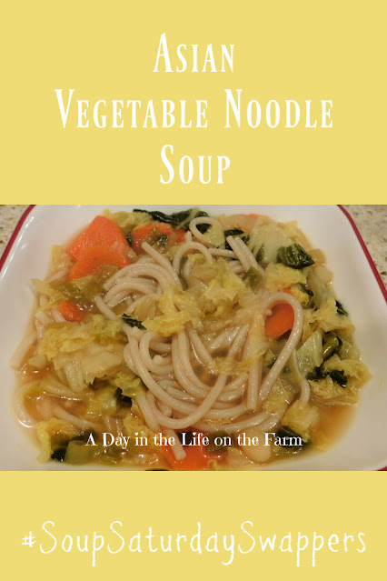 Asian Vegetable Noodle Soup pin