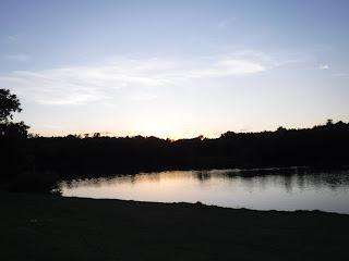 A mostly pale blue and golden sunset reflects on the lake at Bacon Creek Park, while shade on the trees causes a silhouette effect
