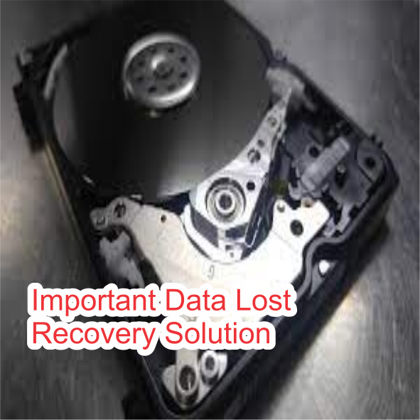 Important Data Lost Recovery Solution