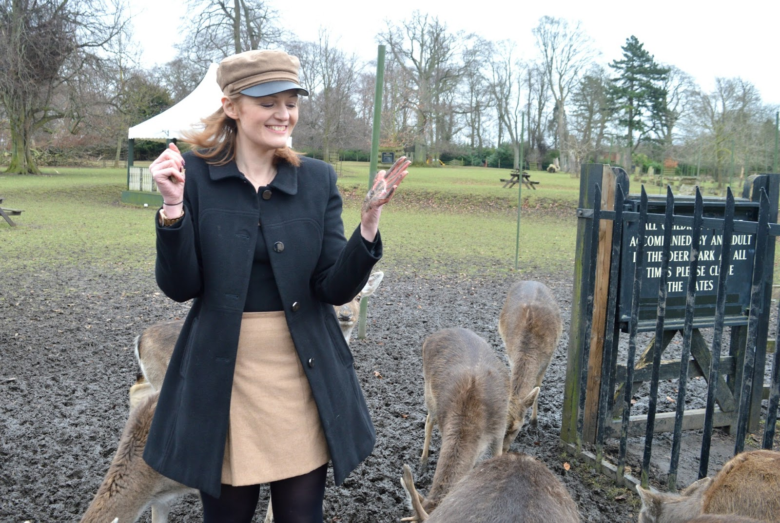 Feeding the Deer at Whitworth Hall