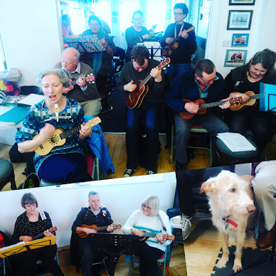Wukulele's February uke jam at Worthing Rowing Club