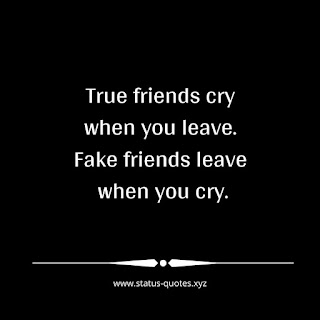 Quotes On Fake Relationship 14