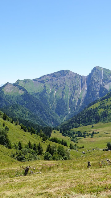 Mountains, valley, trees, grass, green, nature